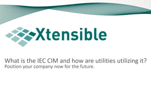 What is IEC CIM – English