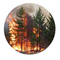 weather and wild fire analytics